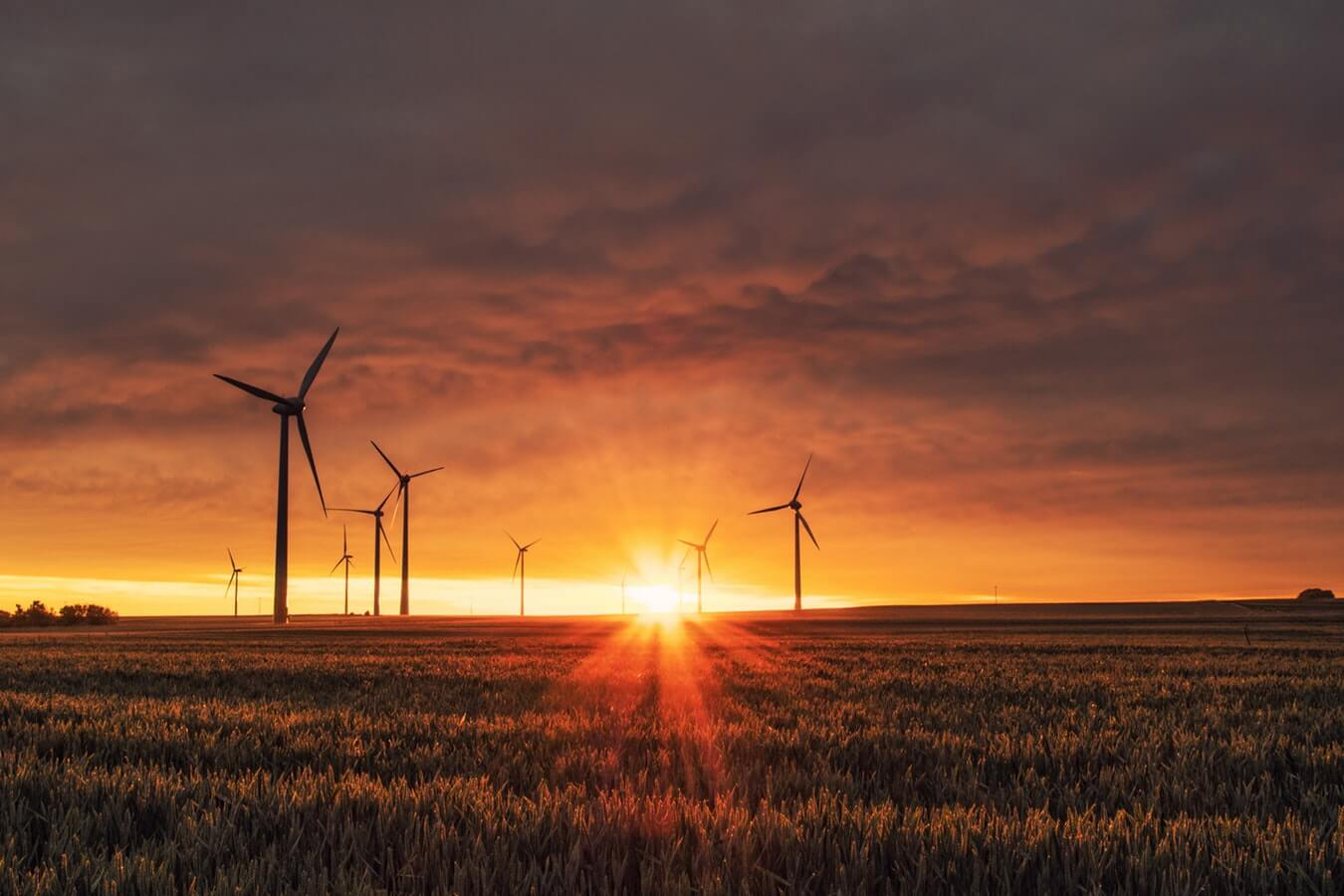 The rise of sustainable investing