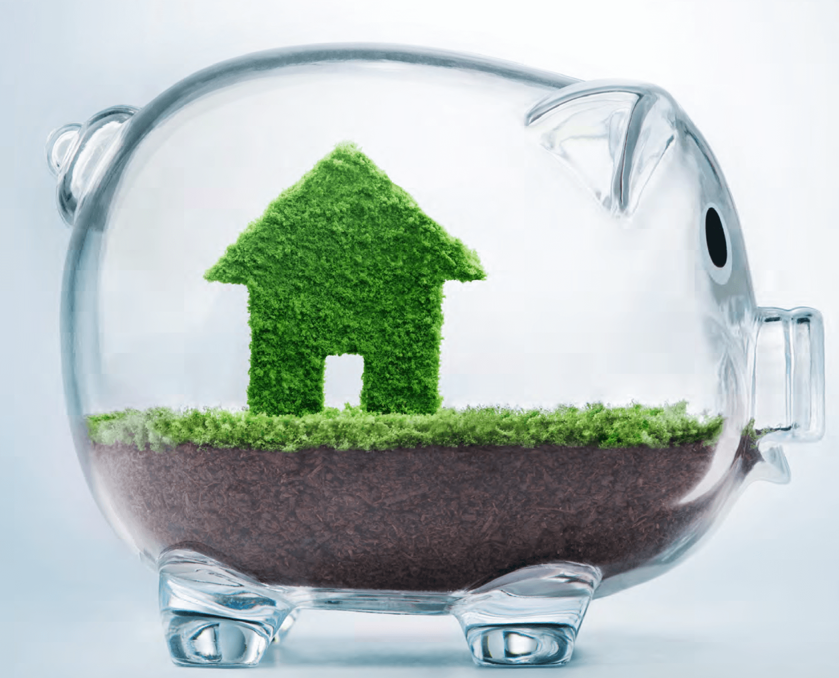 Equity Release – What options are available to me?
